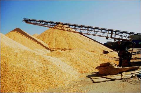 粮食谷物干燥机
